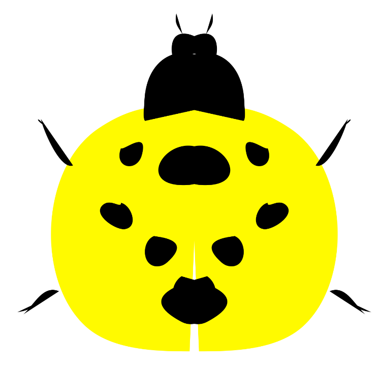 Baby ladybird larvae video cover
