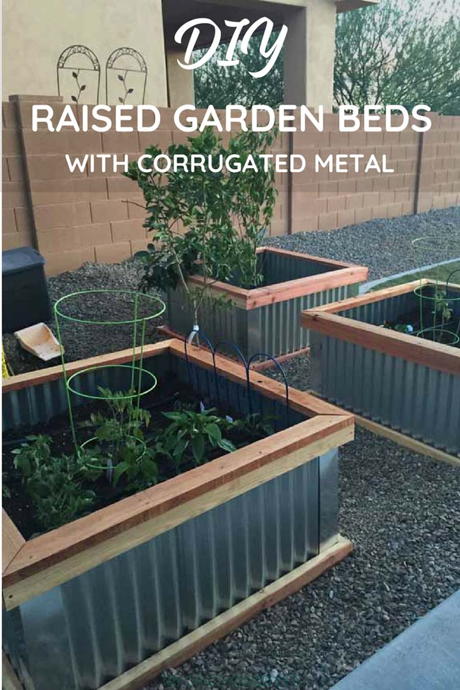 Vegetable Garden Planter Box Designs