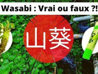 Pourquoi vous n'avez probablement jamais mangé de (vrai) Wasabi !