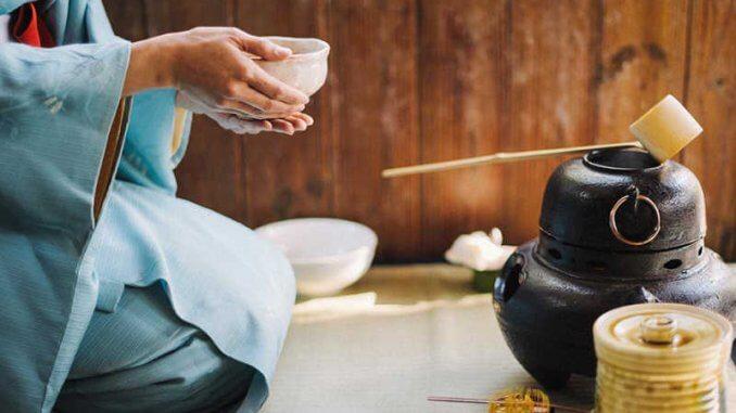 La culture du thé au Japon - MycrazyJapan