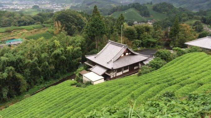 La ville de Wazuka - MycrazyJapan