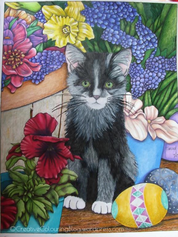 A Kitten In Spring