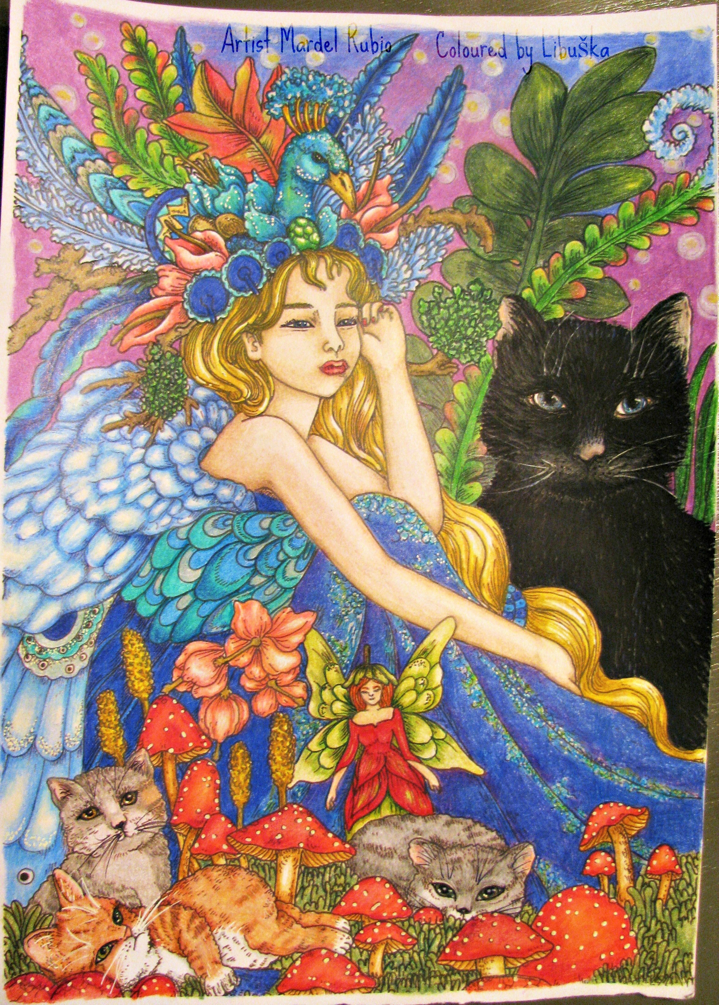 Fairies and cats