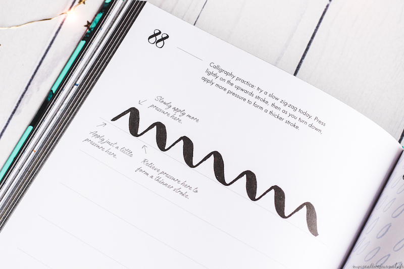livre hand lettering 365 days of art