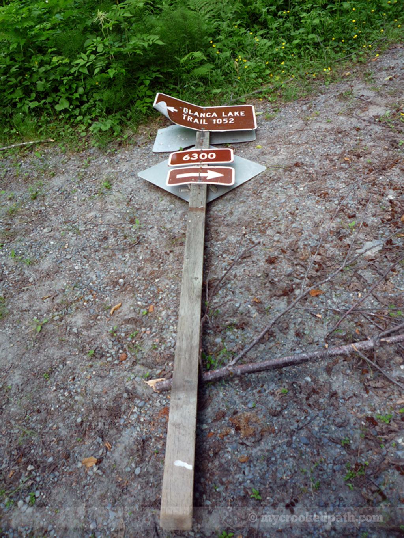 Which way do I go?!