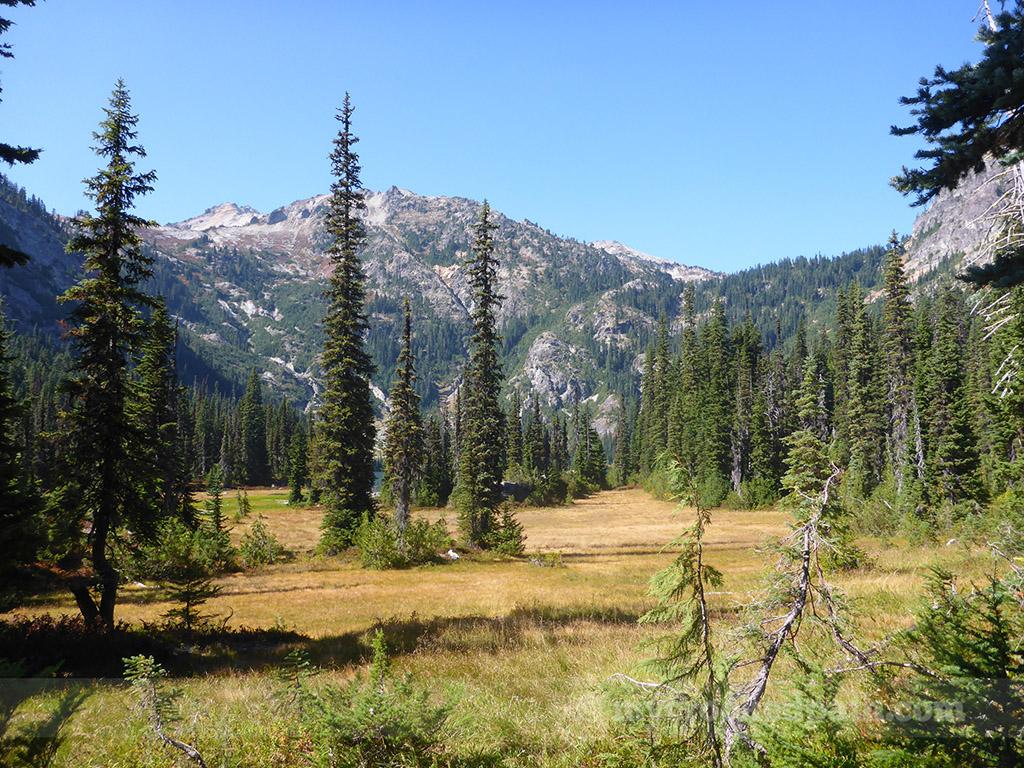 Meandering meadow