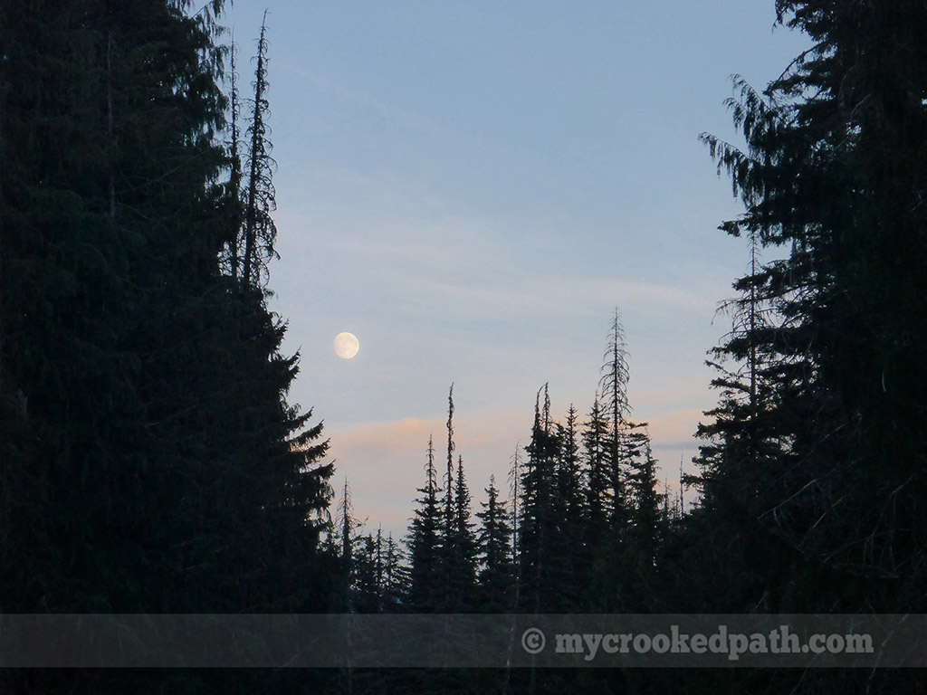 Moonrise over camp