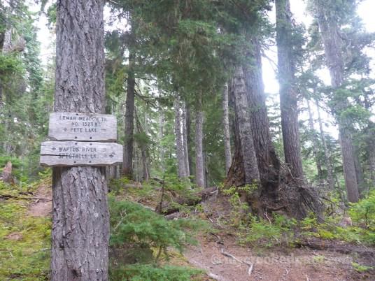 Trail crossings