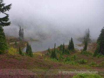 Fog over Park Lakes
