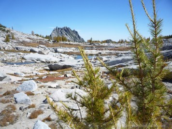 Enchantments_MCP_751