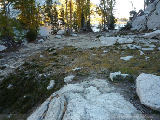 Enchantments_MCP_801