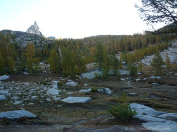 Enchantments_MCP_829