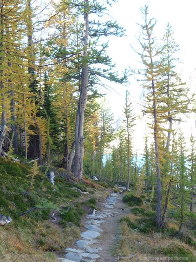 Trail around Perfection