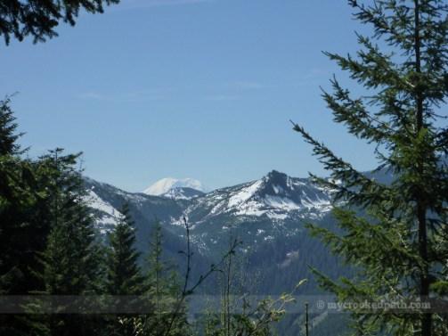 Mt. Rainier peaks above the ridge
