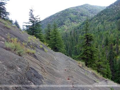 Last trail shot