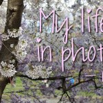 My life in photo's – mei