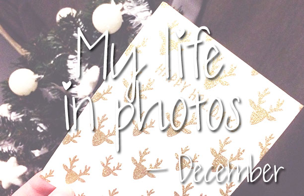 mylifeinphotos-dec