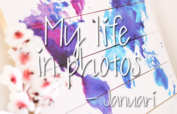 mylifeinphotos-jan17