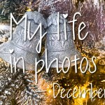 My life in photos – december 2020 #1