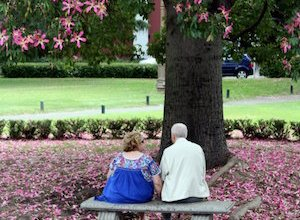 older couple under flowering tree