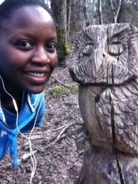 Wooden owl