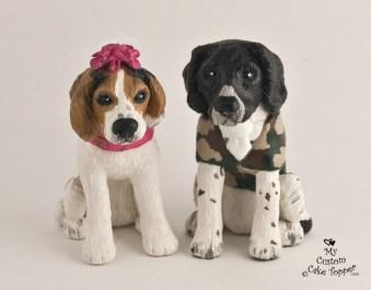 Rhiannas Dogs