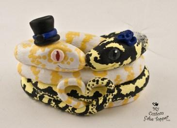 SnakeLoveAlbino1