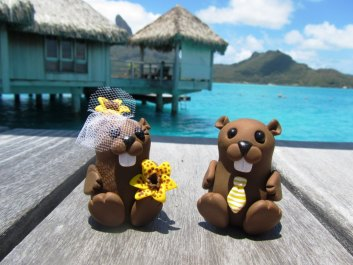 Beavers On Honeymoon In Bora Bora
