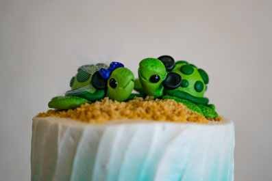 Amanda's Mickey Eared Turtles Cake Topper