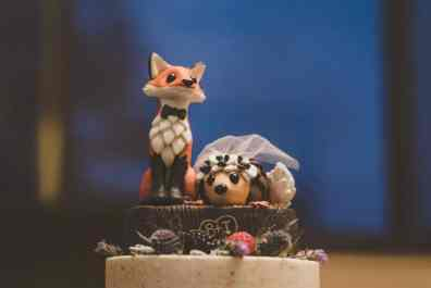 Brianna's Hedgehog and Fox Cake Topper 3