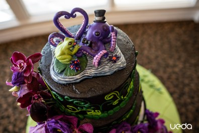 Creighton and Laura's Frog and Octopus Cake Topper 2