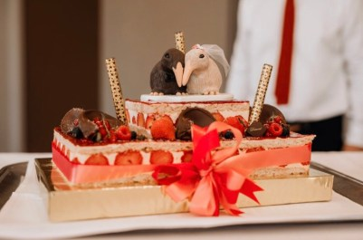 Mathilde's Kiwi Birds Cake Topper 3