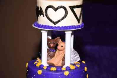 Virginia Bat Themed Wedding Cake Topper: Photo Credit-Appleton Wedding