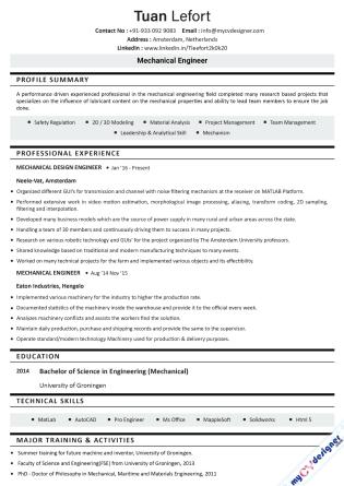Text CV (MCDT0021)