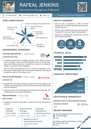 Infographic CV (MCDI0002)