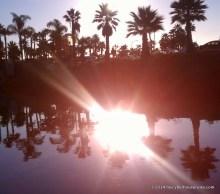 A reflected sun blast!