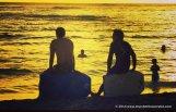 hawaiien surfers