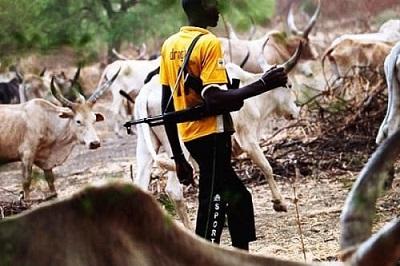 Fulani Gunman