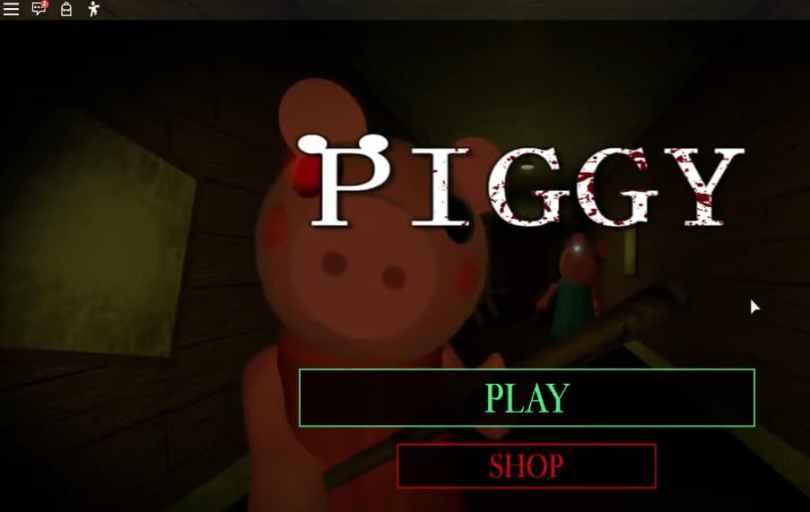 Piggy codes