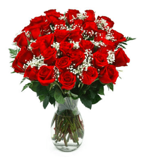 Sam s club 3 dozen red roses with vase only for 12 dozen roses at your door
