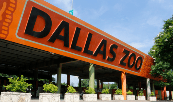dallas zoo dollar days