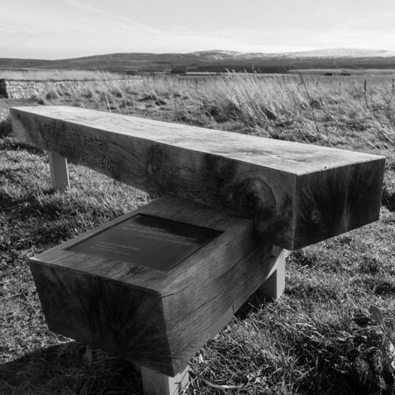A bench to reflect