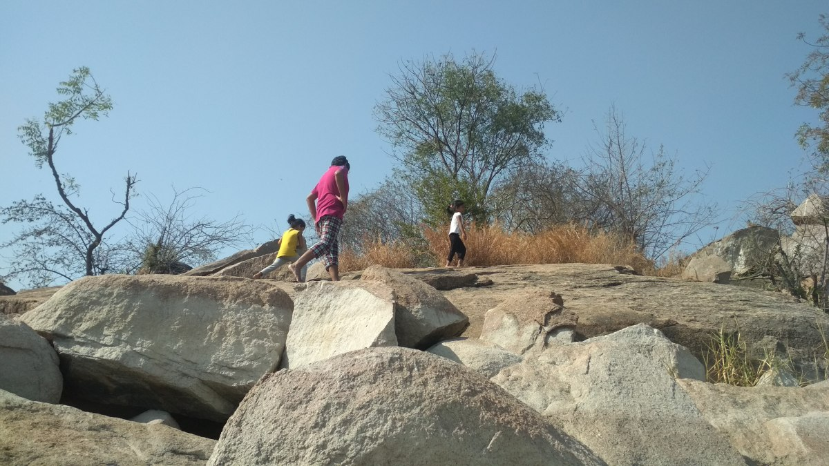 Visit to Ameenpur Lake: Children's Day Out