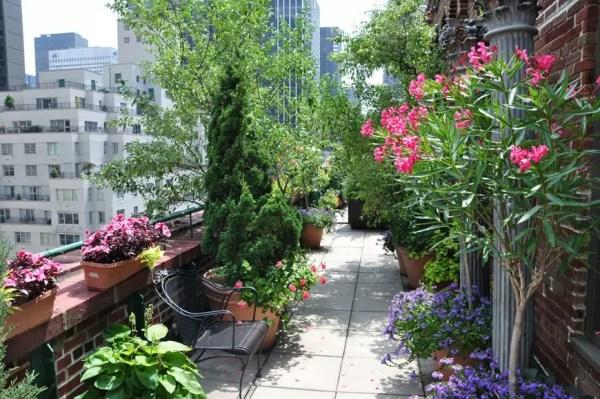 rooftop terrace garden Terrace Gardens of New York City | My Decorative