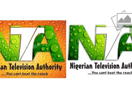 Nigerian Lady Proposes New Logo For NTA Broadcasting Station