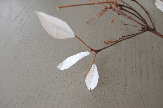 Winter branches & leaves with sticky tape4