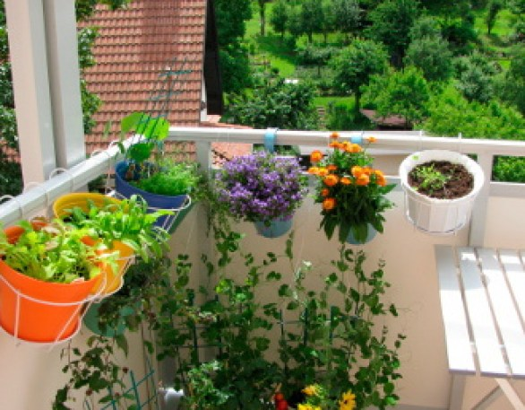 give life to your balcony