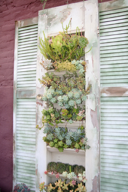 deco with succulents9