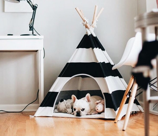 pet beds ideas2