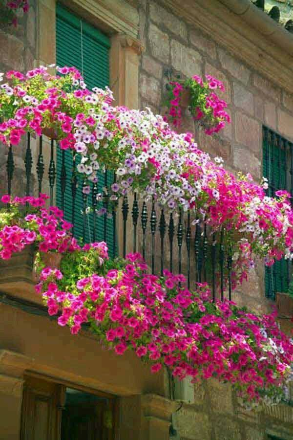 mydesiredhome - blooming balconies ideas15